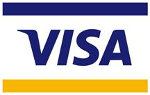 Logo de visa